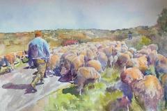 Shepherding, Maria Porter