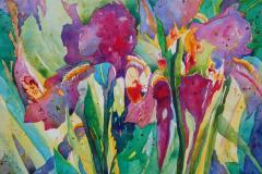 Iris Expressions, Barbara Kempe