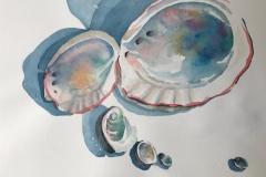 Shimmering Shells, Susan Davis