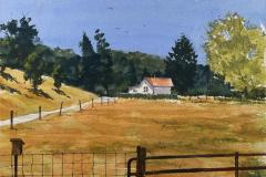 Rancho House and Birdhouse, Michael Friedland