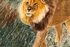 Harold Boyd – King of the Jungle