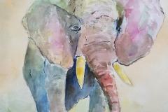 Elephant, Del Lunde