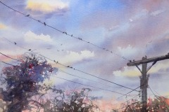 Birds on a Wire, Colleen Reynolds
