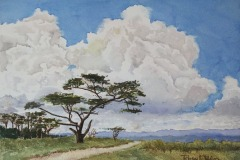 Clouds Over the Great Rift Valley, Ralph Wilson