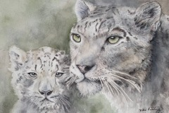 Snow Leopards, Billie Armstrong