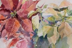 Christmas Bloom, Maria Porter, 2nd