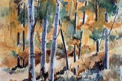 Birch Tree Gold, Diane Pargament