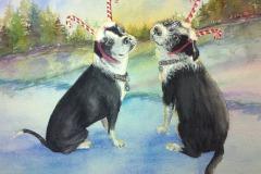 Pups on Ice, Lucinda Johnson