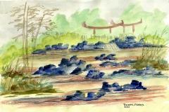 Hydraulic Zen, Thomas Adams