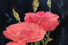 Maura's Rose, Jo Kopp