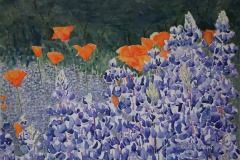 Poppies among the Lupines, Ralph Wilson