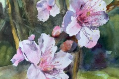 Blossoms, Maria Porter, 2nd Place