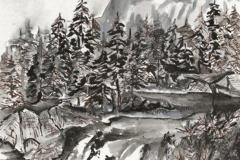 Glacier National Park, Marleen Merchant
