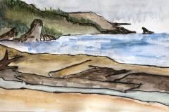 North Coast Ebb Tide, Ain Veske